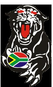 Logo panther favicon
